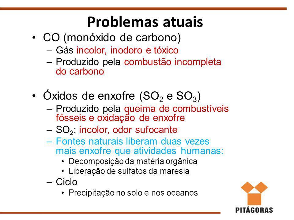 CO (monóxido de carbono) –Gás incolor, inodoro e tóxico –Produzido pela combustão incompleta do carbono Óxidos de enxofre (SO 2 e SO 3 ) –Produzido pela queima de combustíveis fósseis e oxidação de enxofre –SO 2 : incolor, odor sufocante –Fontes naturais liberam duas vezes mais enxofre que atividades humanas: Decomposição da matéria orgânica Liberação de sulfatos da maresia –Ciclo Precipitação no solo e nos oceanos