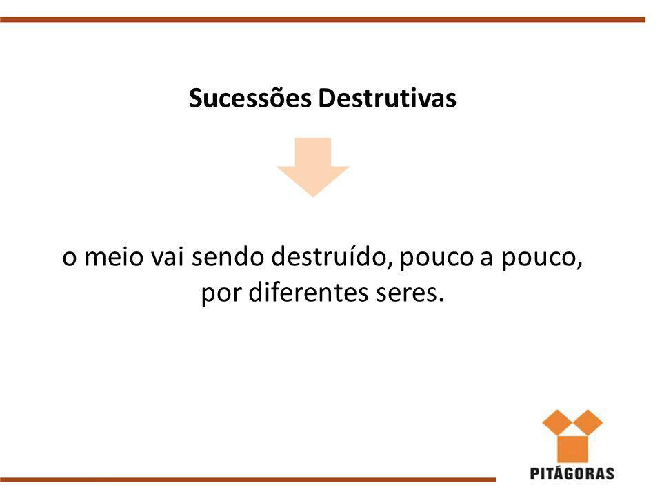 Sucessões Destrutivas o meio vai sendo destruído, pouco a pouco, por diferentes seres.