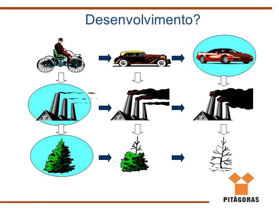 Uso de recursos naturais Problemas atuais Fontes Renováveis: são aquelas cujas fontes não se esgotam, ou seja, se renovam (água, sol, vento, biomassa, etc).