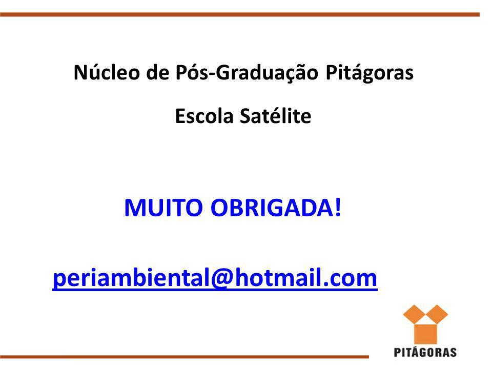 Núcleo de Pós-Graduação Pitágoras Escola Satélite periambiental@hotmail.com MUITO OBRIGADA!
