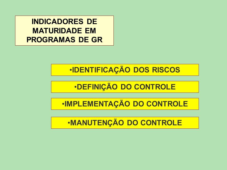 INDICADORES DE MATURIDADE EM PROGRAMAS DE GR IDENTIFICAÇÃO DOS RISCOS DEFINIÇÃO DO CONTROLE IMPLEMENTAÇÃO DO CONTROLE MANUTENÇÃO DO CONTROLE