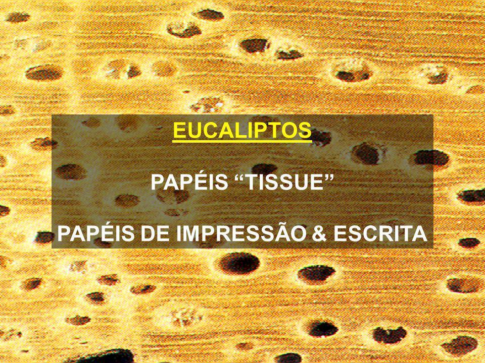 EUCALIPTOS PAPÉIS TISSUE PAPÉIS DE IMPRESSÃO & ESCRITA