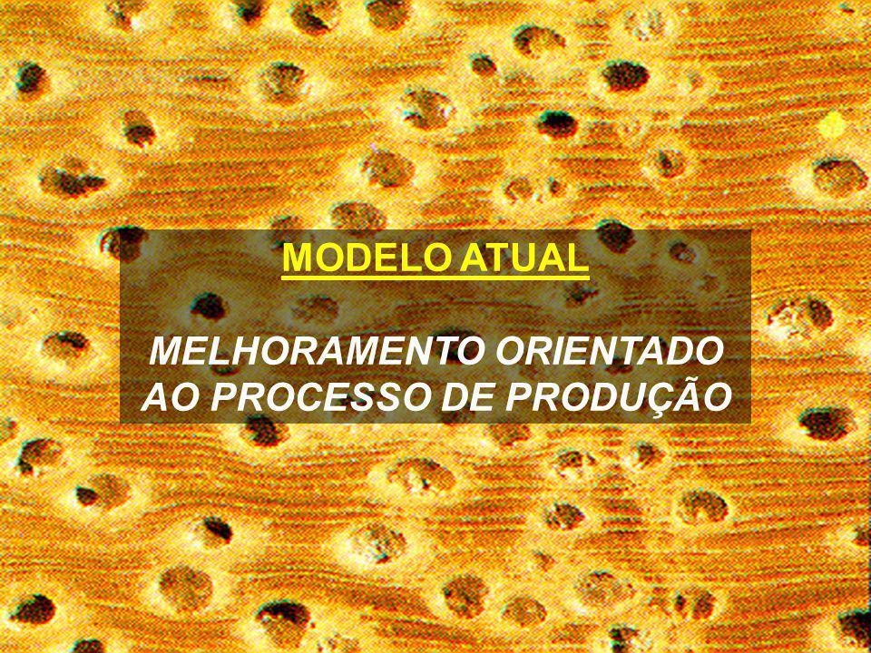 MODELO ATUAL MELHORAMENTO ORIENTADO AO PROCESSO DE PRODUÇÃO