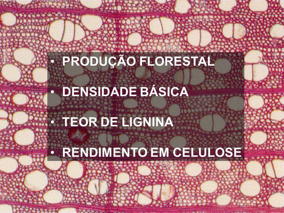 PRODUÇÃO FLORESTAL DENSIDADE BÁSICA TEOR DE LIGNINA RENDIMENTO EM CELULOSE