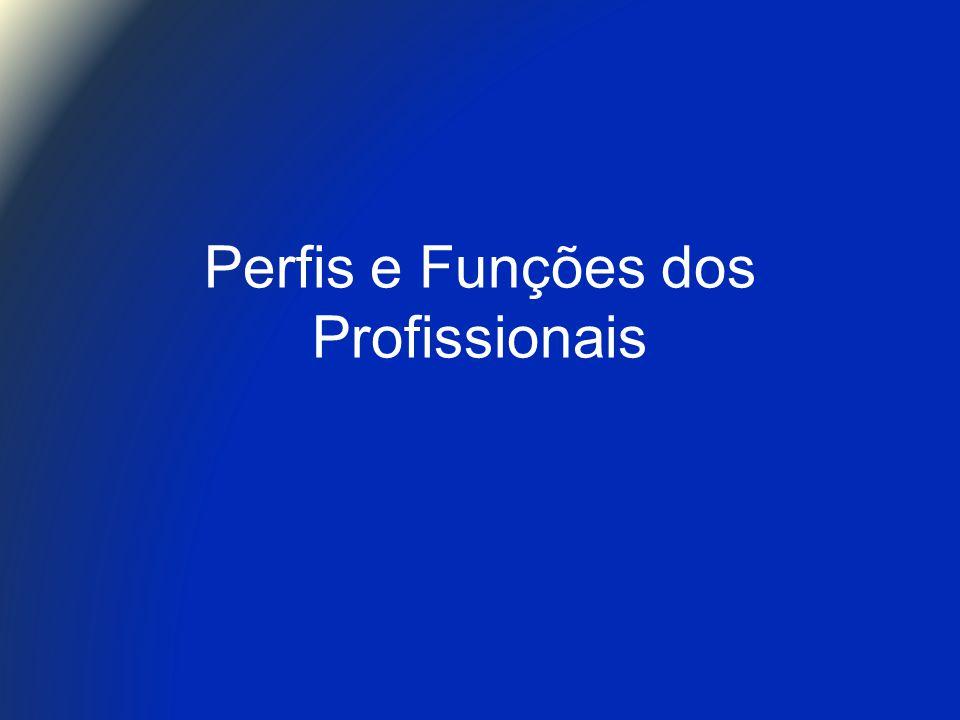 Perfis e Funções dos Profissionais