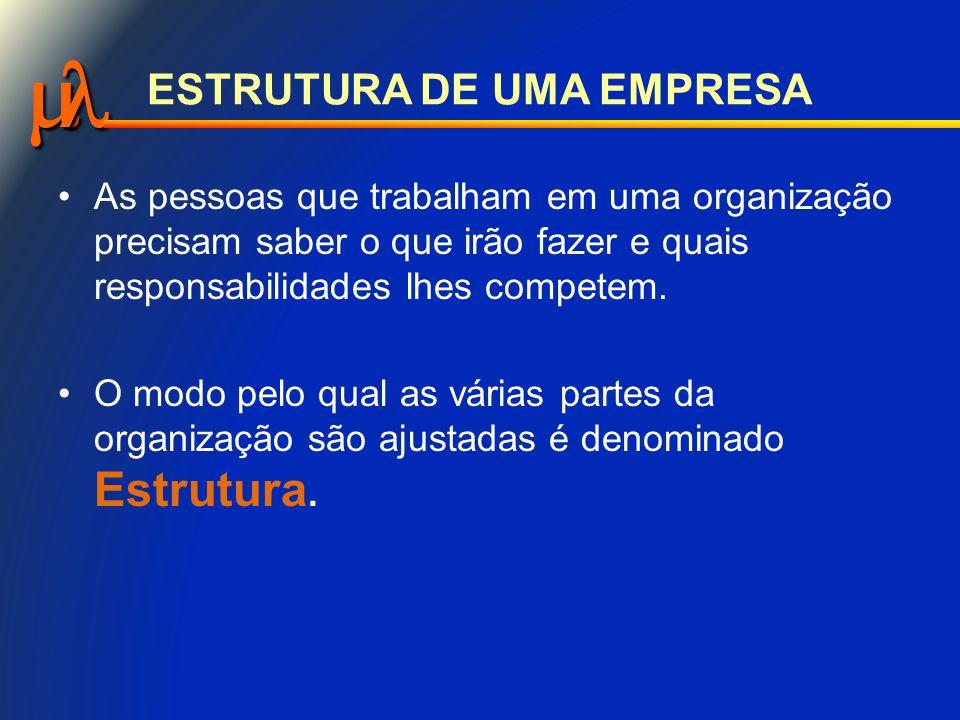  ESTRUTURA DE UMA EMPRESA A melhor forma de compreender a Estrutura de uma organização, é representá-la por um desenho gráfico chamado Organograma.