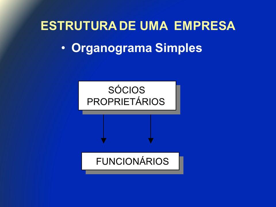 ESTRUTURA DE UMA EMPRESA Organograma Simples SÓCIOS PROPRIETÁRIOS SÓCIOS PROPRIETÁRIOS FUNCIONÁRIO SÓCIOS PROPRIETÁRIOS SÓCIOS PROPRIETÁRIOS FUNCIONÁRIO FUNCIONÁRIOS