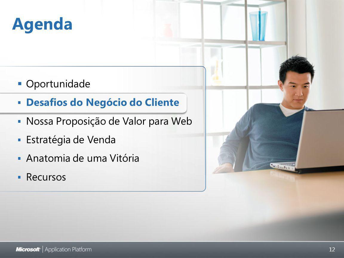 12 Agenda  Oportunidade  Desafios do Negócio do Cliente  Nossa Proposição de Valor para Web  Estratégia de Venda  Anatomia de uma Vitória  Recursos