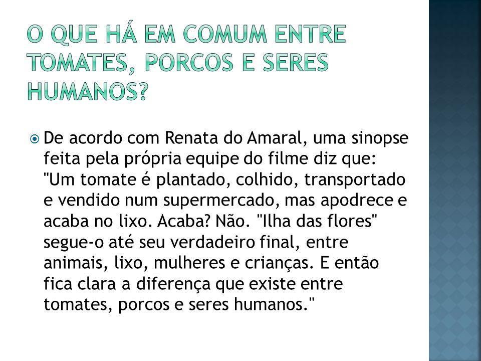  De acordo com Renata do Amaral, uma sinopse feita pela própria equipe do filme diz que: