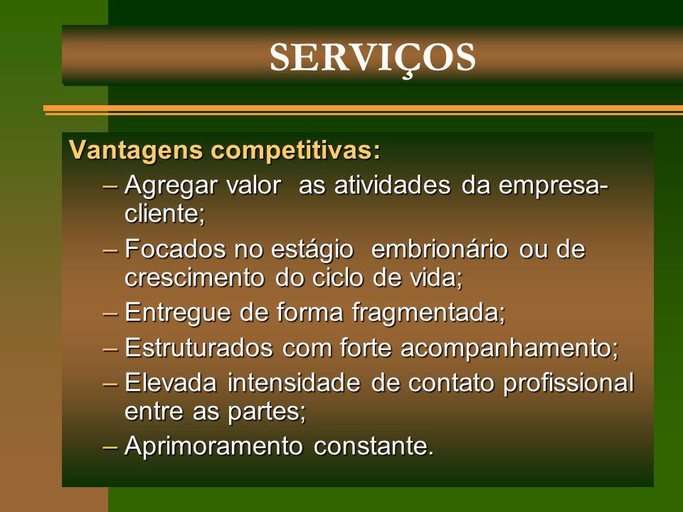 Vantagens competitivas: –Agregar valor as atividades da empresa- cliente; –Focados no estágio embrionário ou de crescimento do ciclo de vida; –Entregu