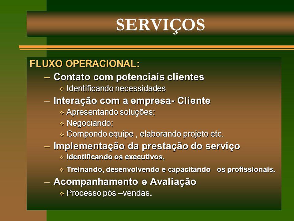FLUXO OPERACIONAL: –Contato com potenciais clientes  Identificando necessidades –Interação com a empresa- Cliente  Apresentando soluções;  Negocian