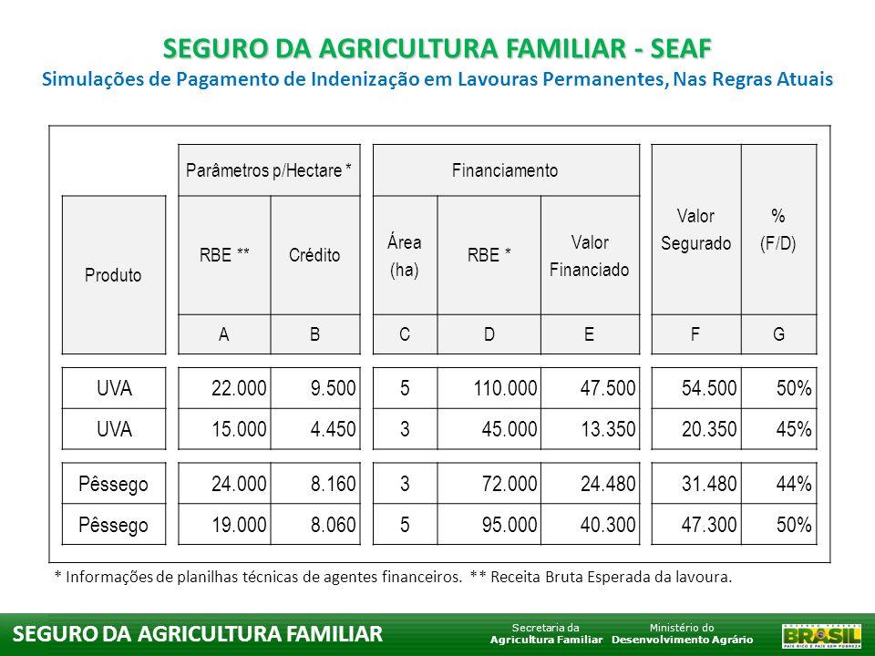 Ministério do Desenvolvimento Agrário Secretaria da Agricultura Familiar SEGURO DA AGRICULTURA FAMILIAR Financiamento Valor Segurado % (F/D) Estimativas p/ perdas de 50% Produto Área (ha) RBE * Valor Financiado Receita Obtida Colheita Pgto.