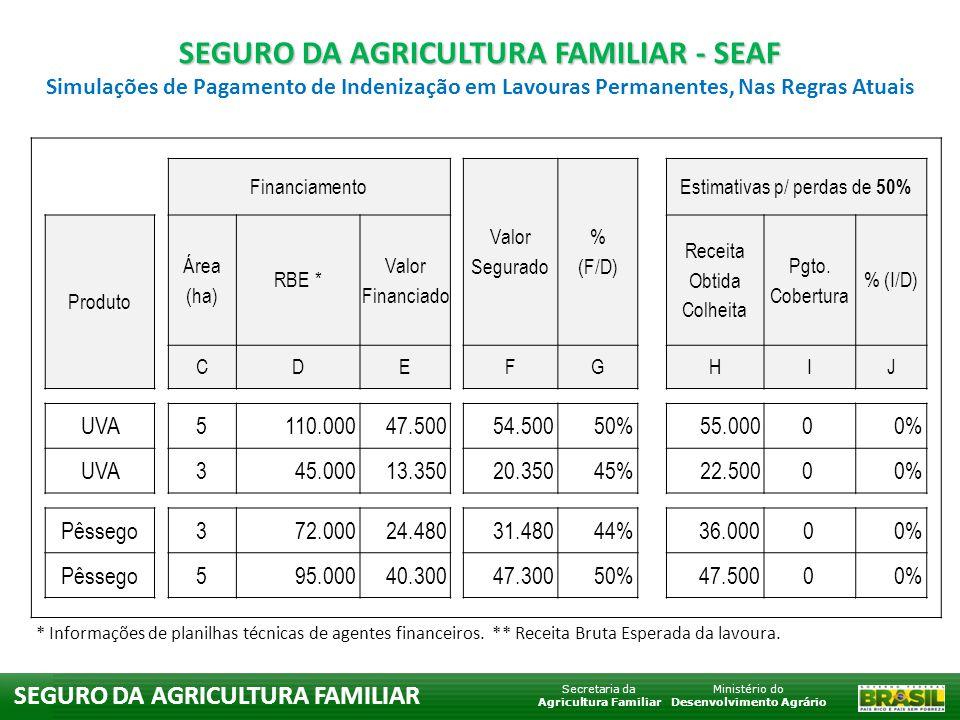 Ministério do Desenvolvimento Agrário Secretaria da Agricultura Familiar SEGURO DA AGRICULTURA FAMILIAR Financiamento Valor Segurado % (F/D) Estimativas p/ perdas de 60% Produto Área (ha) RBE * Valor Financiado Receita Obtida Colheita Pgto.
