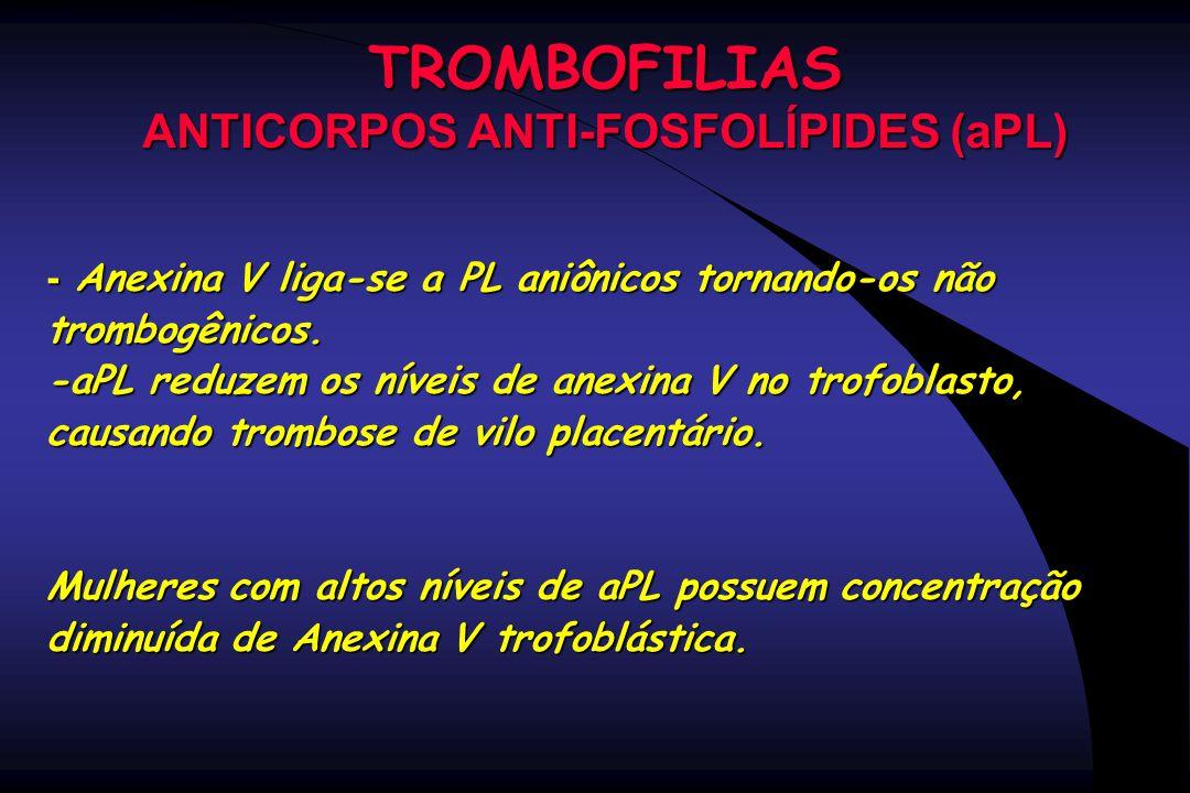 TROMBOFILIAS ANTICORPOS ANTI-FOSFOLÍPIDES (aPL) - Anexina V liga-se a PL aniônicos tornando-os não trombogênicos. -aPL reduzem os níveis de anexina V