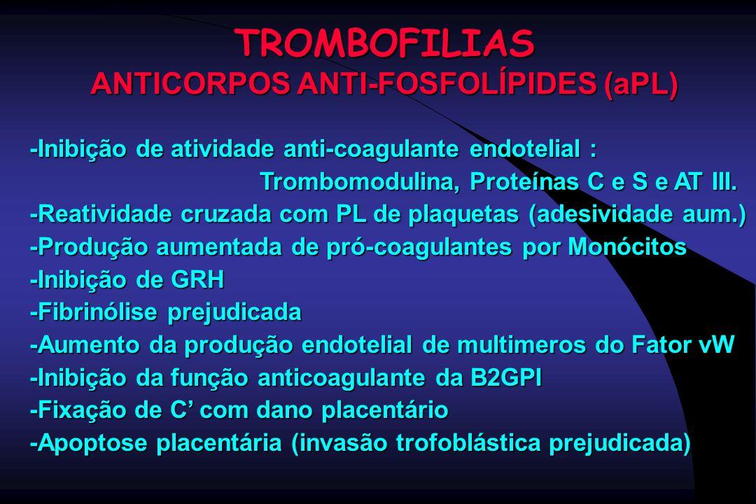 TROMBOFILIAS ANTICORPOS ANTI-FOSFOLÍPIDES (aPL) -Inibição de atividade anti-coagulante endotelial : Trombomodulina, Proteínas C e S e AT III. Trombomo