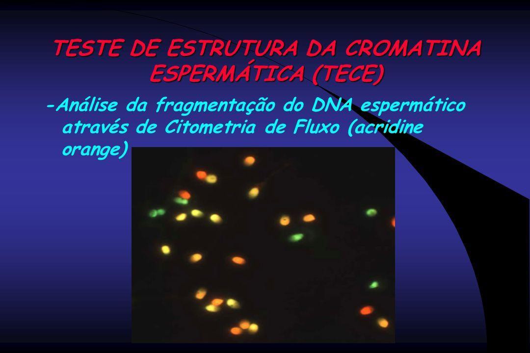 TESTE DE ESTRUTURA DA CROMATINA ESPERMÁTICA (TECE) -Análise da fragmentação do DNA espermático através de Citometria de Fluxo (acridine orange)