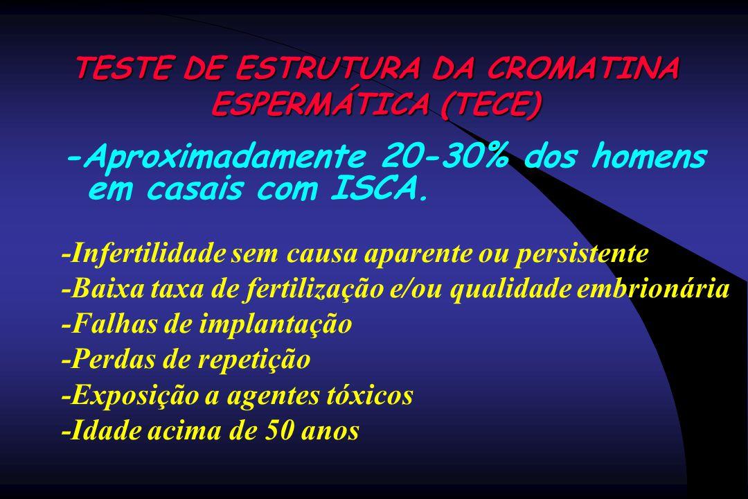 TESTE DE ESTRUTURA DA CROMATINA ESPERMÁTICA (TECE) -Aproximadamente 20-30% dos homens em casais com ISCA. -Infertilidade sem causa aparente ou persist