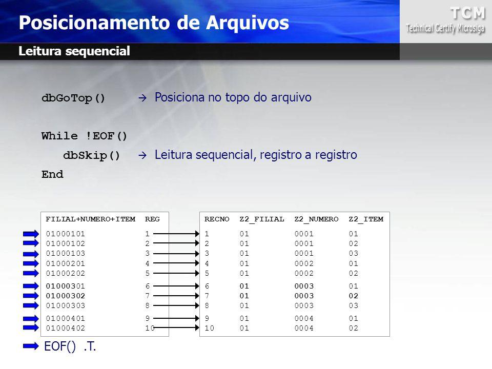 Posicionamento de Arquivos RECNO Z2_FILIAL Z2_NUMERO Z2_ITEM 1 01 0001 01 2 01 0001 02 3 01 0001 03 4 01 0002 01 5 01 0002 02 6 01 0003 01 7 01 0003 0