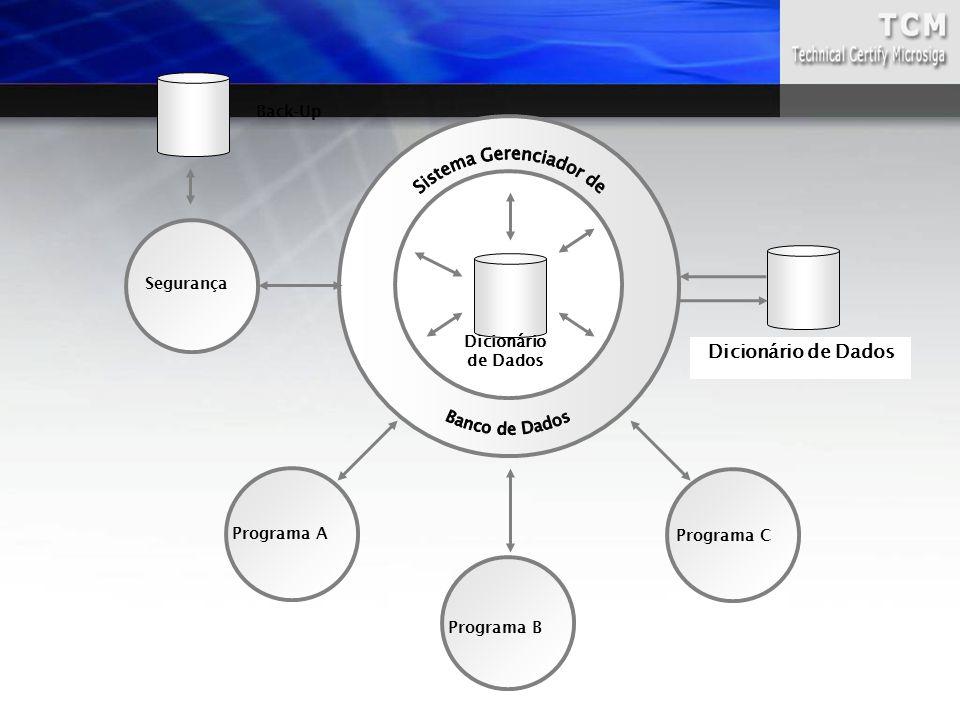 Dicionário de Dados Programa A Programa C Back-Up Segurança Dicionário de Dados Programa B