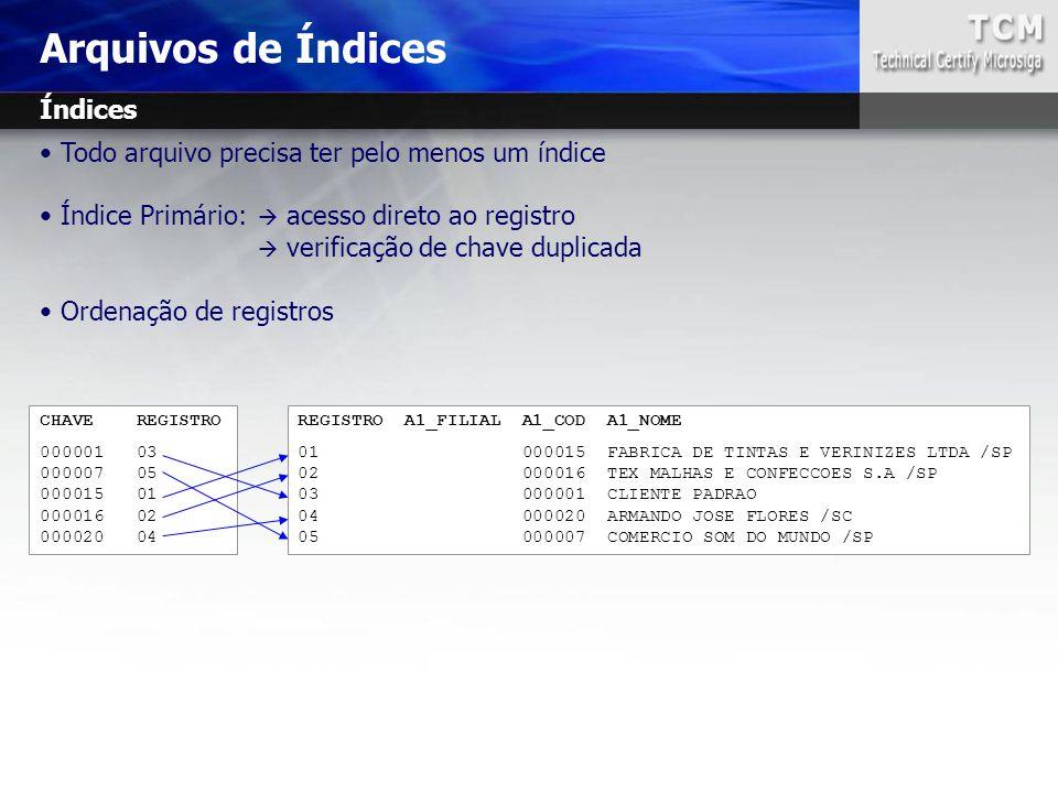 Arquivos de Índices REGISTRO A1_FILIAL A1_COD A1_NOME 01 000015 FABRICA DE TINTAS E VERINIZES LTDA /SP 02 000016 TEX MALHAS E CONFECCOES S.A /SP 03 00