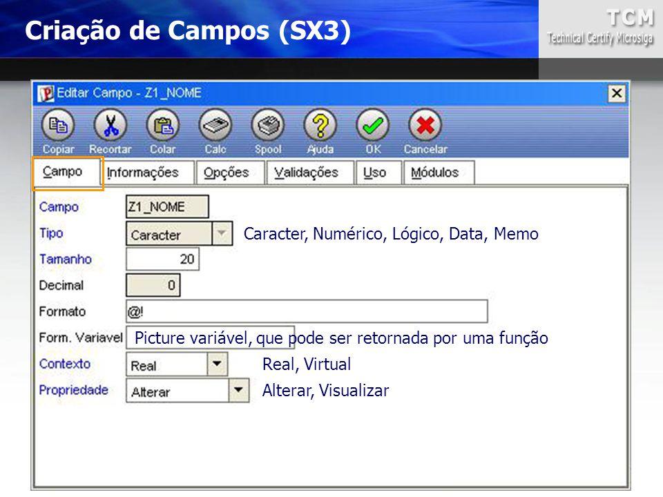 Caracter, Numérico, Lógico, Data, Memo Real, Virtual Alterar, Visualizar Criação de Campos (SX3) Picture variável, que pode ser retornada por uma funç