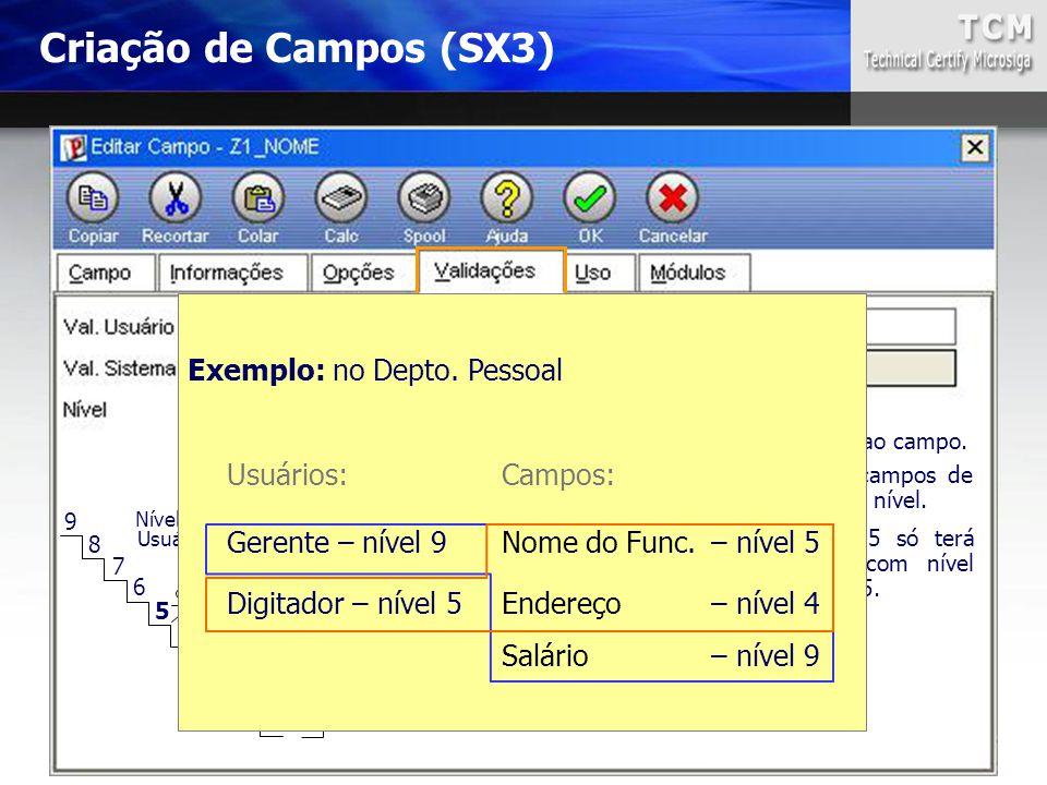 0 1 2 3 4 5 6 7 8 9 0 a 9 Define a permissão de acesso ao campo. O Usuário só terá acesso a campos de nível igual ou menor que o seu nível. Exemplo:Us