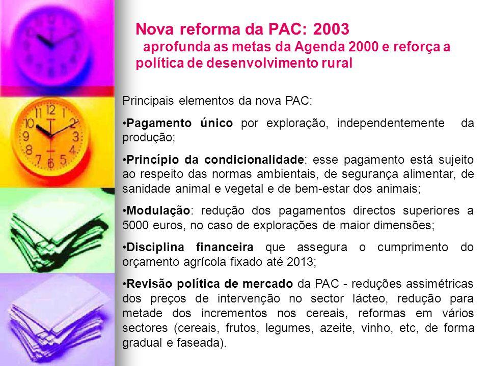 Nova reforma da PAC: 2003 aprofunda as metas da Agenda 2000 e reforça a política de desenvolvimento rural Principais elementos da nova PAC: Pagamento