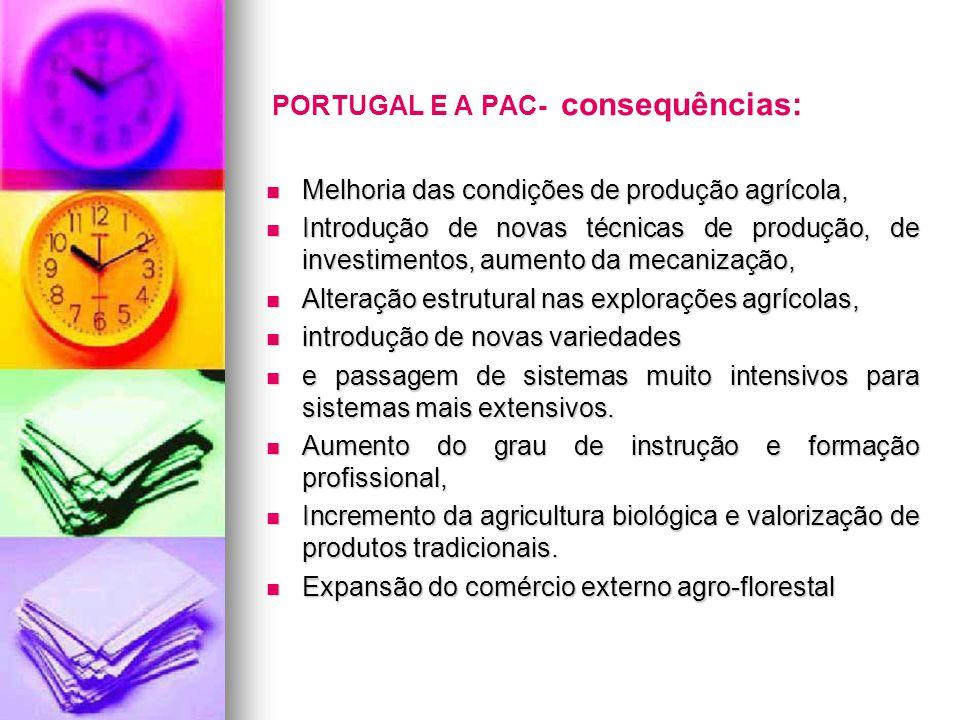 PORTUGAL E A PAC- consequências: Melhoria das condições de produção agrícola, Melhoria das condições de produção agrícola, Introdução de novas técnica