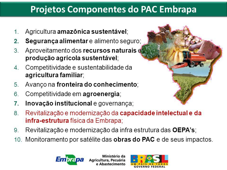 1. Agricultura amazônica sustentável; 2. Segurança alimentar e alimento seguro; 3.