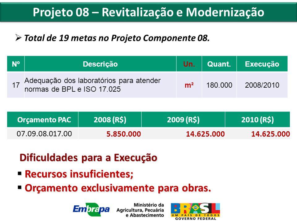 Projeto 08 – Revitalização e Modernização  Total de 19 metas no Projeto Componente 08.