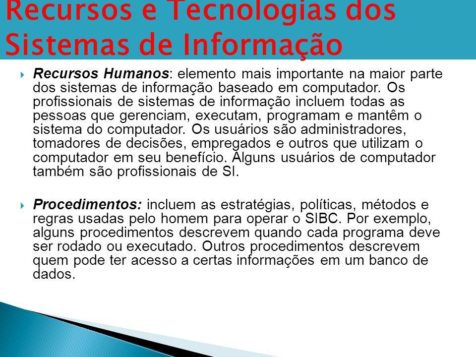  Recursos Humanos: elemento mais importante na maior parte dos sistemas de informação baseado em computador. Os profissionais de sistemas de informaç