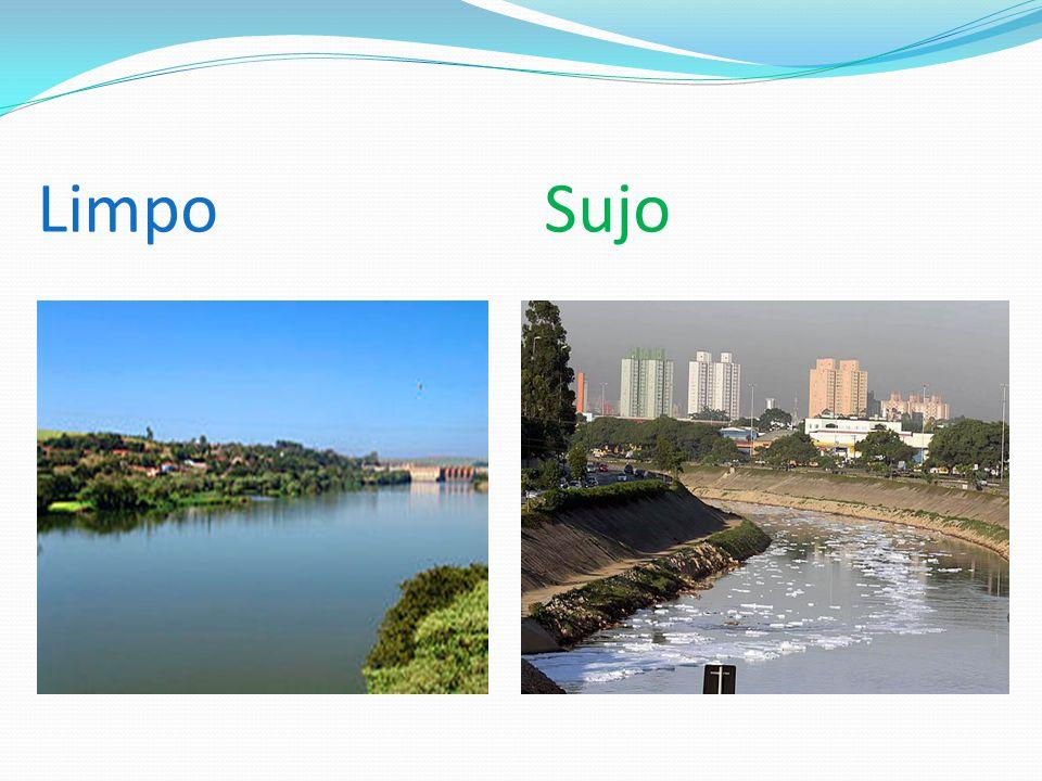 O Rio Tiete: O Rio Tietê é um rio brasileiro do estado de São Paulo.