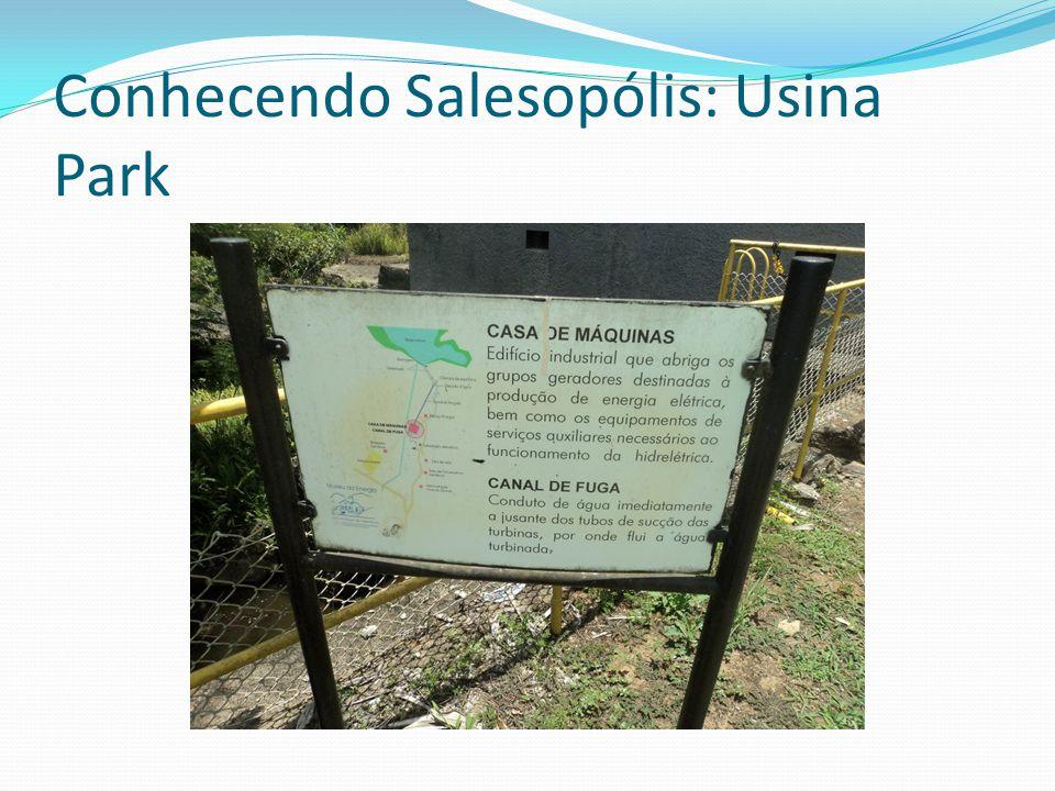 Salesópolis Salesópolis é uma cidade muito pequena mais é muito importante para o meio ambiente, em salesópolis existe uma grande quantidade de planta