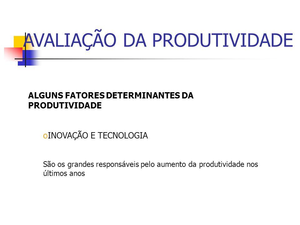 ALGUNS FATORES DETERMINANTES DA PRODUTIVIDADE oMÃO DE OBRA Não adianta ter mão de obra barata, que não seja produtiva. Exemplo da indústria metalúrgic