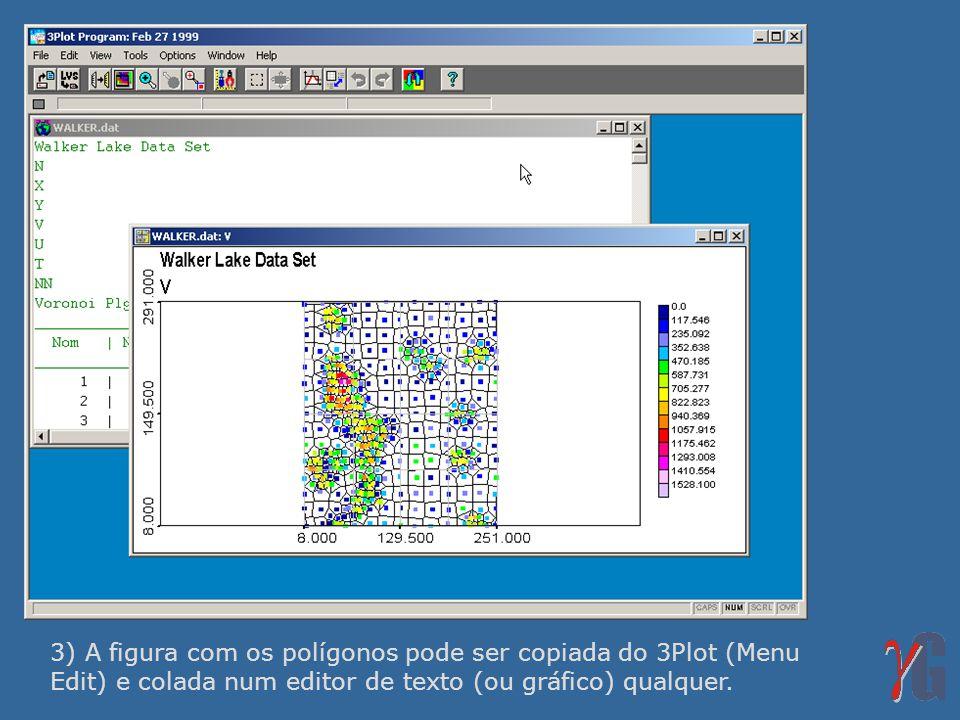 3) A figura com os polígonos pode ser copiada do 3Plot (Menu Edit) e colada num editor de texto (ou gráfico) qualquer.