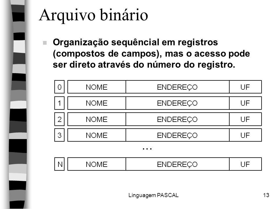 Linguagem PASCAL13 Arquivo binário n Organização sequêncial em registros (compostos de campos), mas o acesso pode ser direto através do número do regi