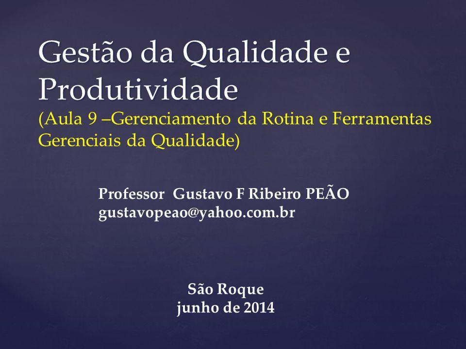 Gestão da Qualidade e Produtividade Gestão da Qualidade e Produtividade (Aula 9 –Gerenciamento da Rotina e Ferramentas Gerenciais da Qualidade) Profes