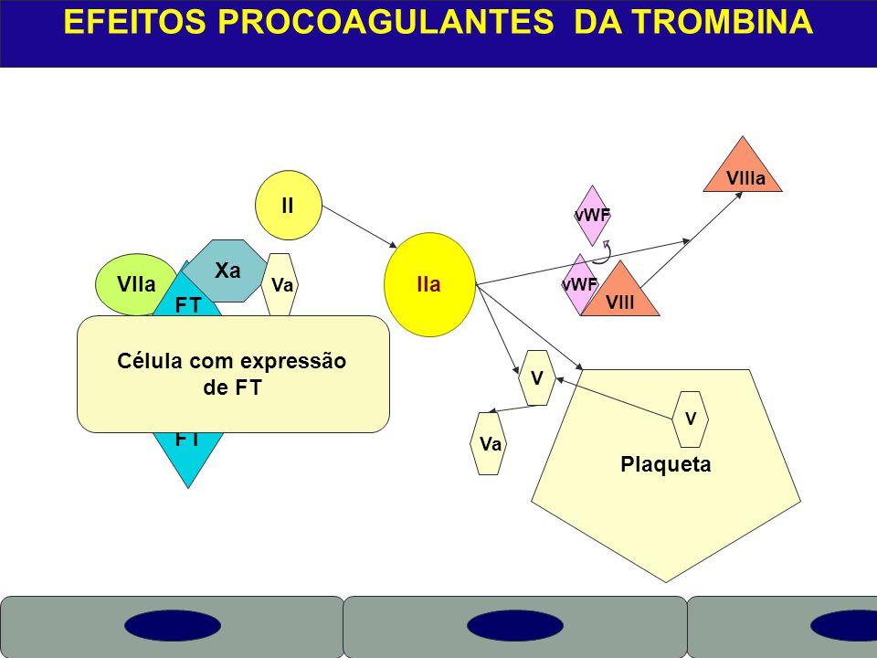 X VIIa EFEITOS PROCOAGULANTES DA TROMBINA FT Célula com expressão de FT Xa Va II IIa Plaqueta V VIII VIIIa vWF Va V