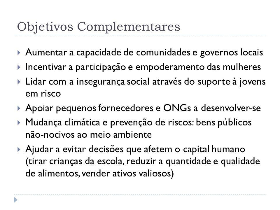 Objetivos Complementares  Aumentar a capacidade de comunidades e governos locais  Incentivar a participação e empoderamento das mulheres  Lidar com