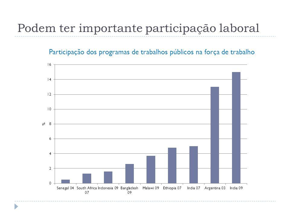 Podem ter importante participação laboral Participação dos programas de trabalhos públicos na força de trabalho