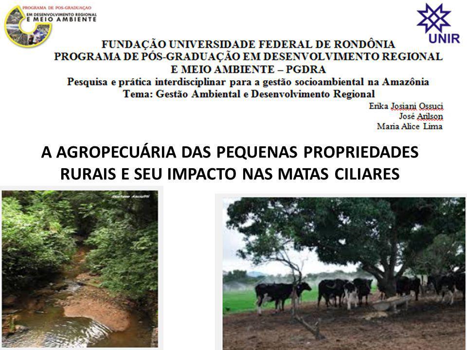 A AGROPECUÁRIA DAS PEQUENAS PROPRIEDADES RURAIS E SEU IMPACTO NAS MATAS CILIARES