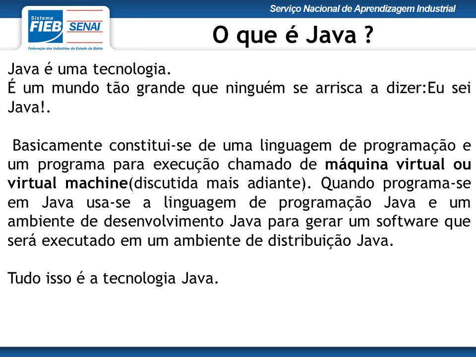 Java é uma tecnologia. É um mundo tão grande que ninguém se arrisca a dizer:Eu sei Java!.