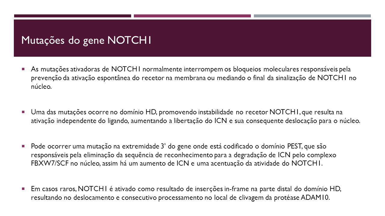 Mutações do gene NOTCH1  As mutações ativadoras de NOTCH1 normalmente interrompem os bloqueios moleculares responsáveis pela prevenção da ativação espontânea do recetor na membrana ou mediando o final da sinalização de NOTCH1 no núcleo.