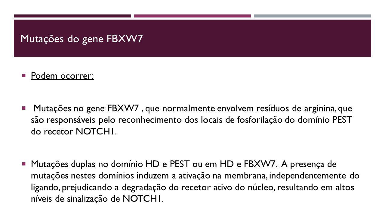 Mutações do gene FBXW7  Podem ocorrer:  Mutações no gene FBXW7, que normalmente envolvem resíduos de arginina, que são responsáveis pelo reconhecimento dos locais de fosforilação do domínio PEST do recetor NOTCH1.