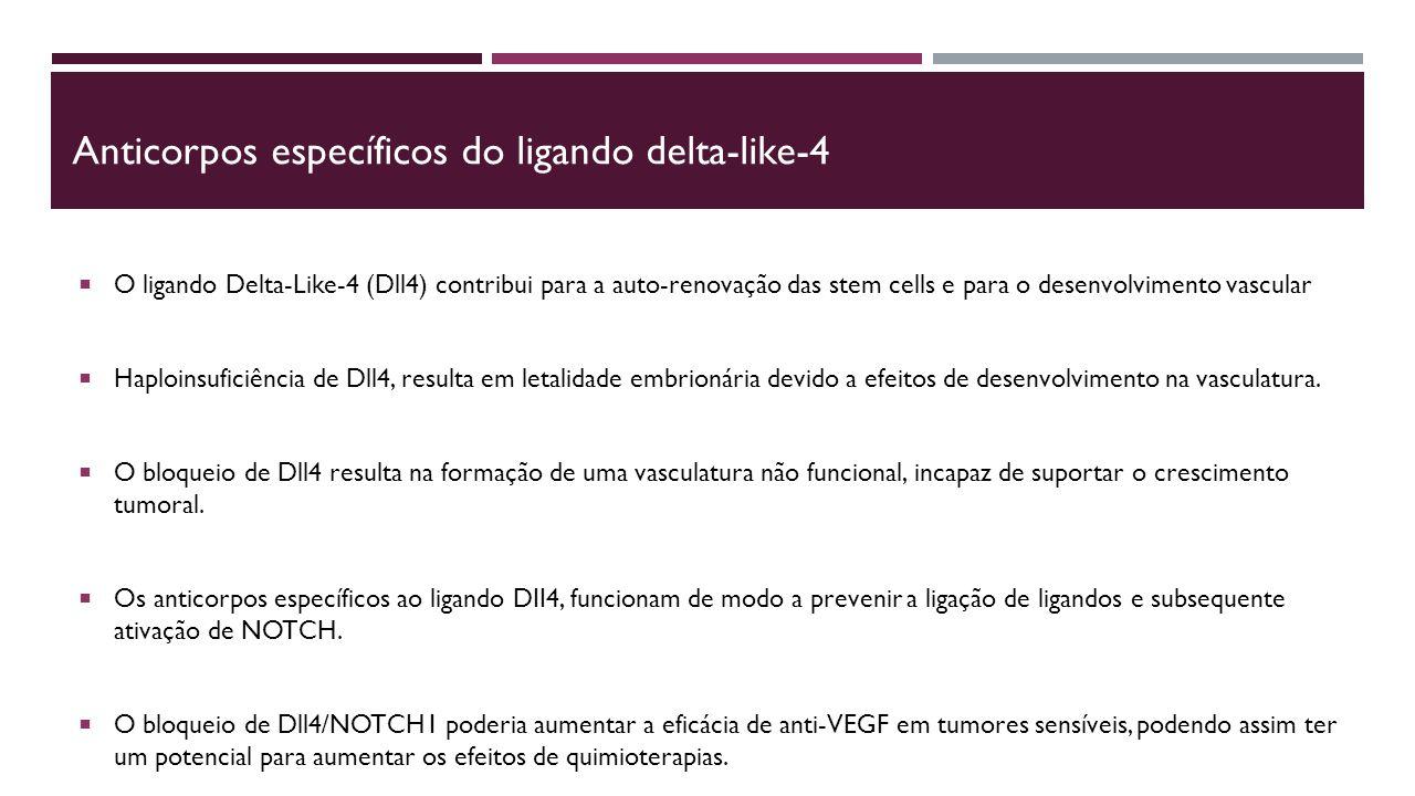 Anticorpos específicos do ligando delta-like-4  O ligando Delta-Like-4 (Dll4) contribui para a auto-renovação das stem cells e para o desenvolvimento vascular  Haploinsuficiência de Dll4, resulta em letalidade embrionária devido a efeitos de desenvolvimento na vasculatura.