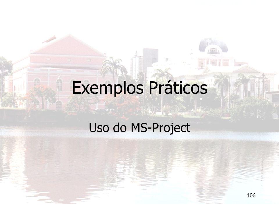 106 Exemplos Práticos Uso do MS-Project