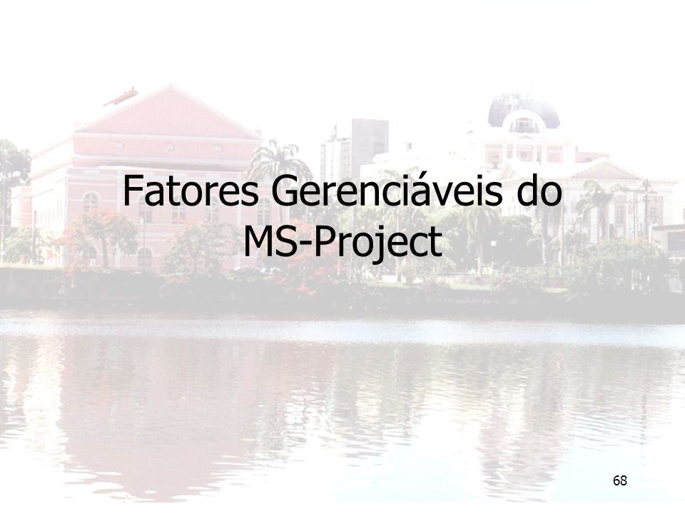 68 Fatores Gerenciáveis do MS-Project