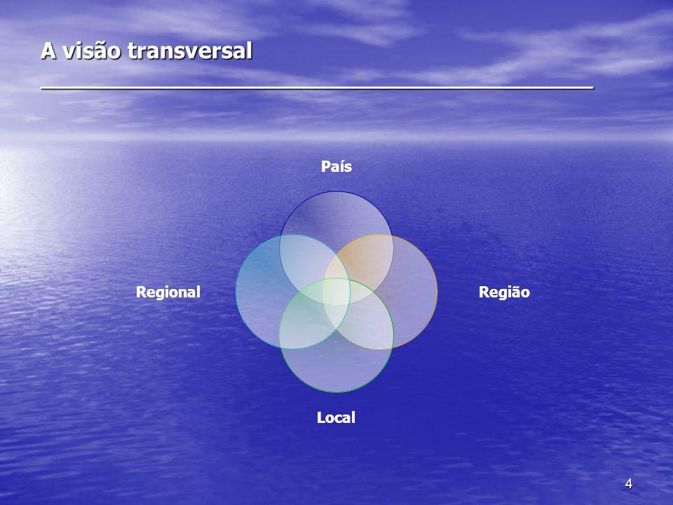 4 A visão transversal _______________________________________