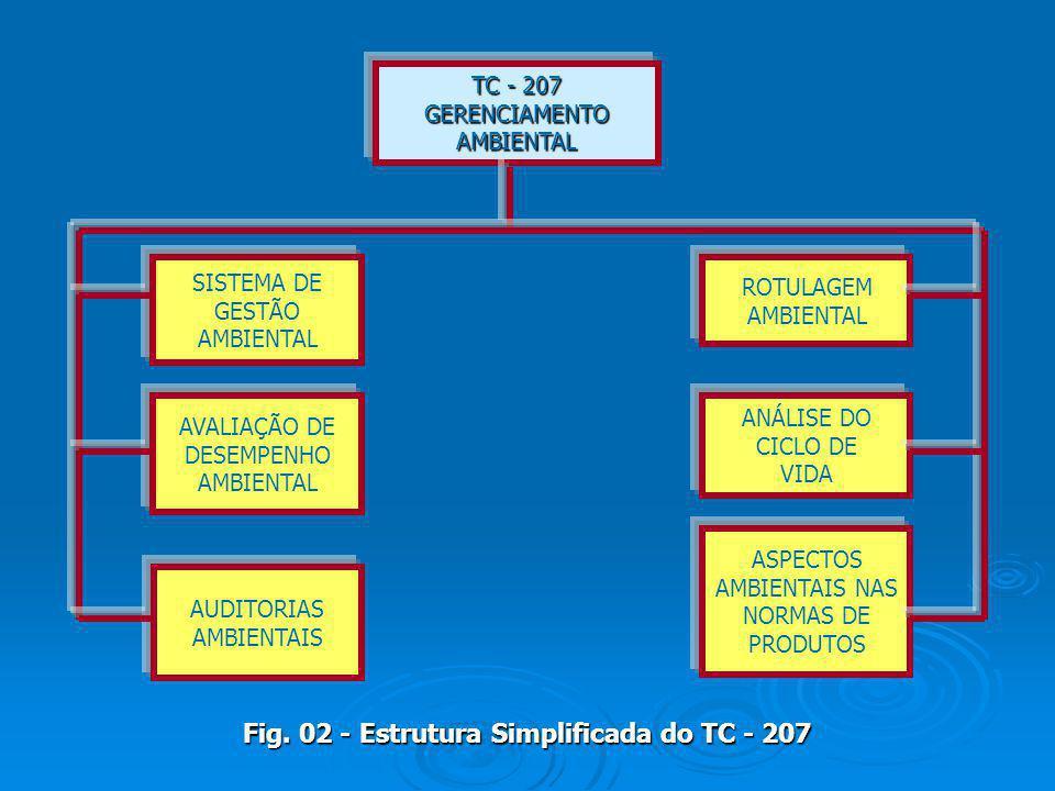 TC - 207 GERENCIAMENTOAMBIENTAL ROTULAGEM AMBIENTAL SISTEMA DE GESTÃO AMBIENTAL AVALIAÇÃO DE DESEMPENHO AMBIENTAL ANÁLISE DO CICLO DE VIDA ASPECTOS AM
