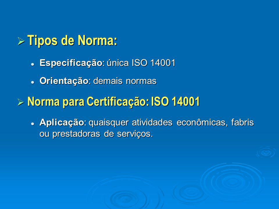  Tipos de Norma: Especificação: única ISO 14001 Especificação: única ISO 14001 Orientação: demais normas Orientação: demais normas  Norma para Certi